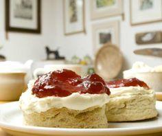Avocet Gallery in Rye Rye, Trip Advisor, Cheesecake, East Sussex, Desserts, Restaurants, Display, Gallery, Food