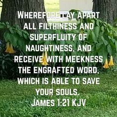 James 1:21 King James KJV