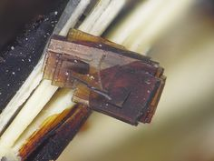 Barytolamprophyllite, Ba2Na3(Fe+++,Ti)3(Si2O7)2(O,OH,F)4, Steinbruch Stolz, Hillesheim, Eifel, Rheinland-Pfalz, Deutschland. Fov 2 mm. Copyright: Stephan Wolfsried