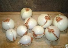 Onion bombs - great for camping. Cut an onion in half. Make a meat loaf ball to put inside the onion. Use anything you like for seasoning! Wrap in foil and through in the fire and flip. Should take 20 mins to cook.,10 mins on each side