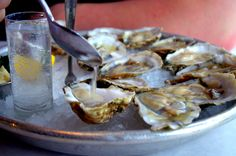 Jax Denver / fish house & oysters / happy hour $1.25 oysters / pairing oysters and vodka