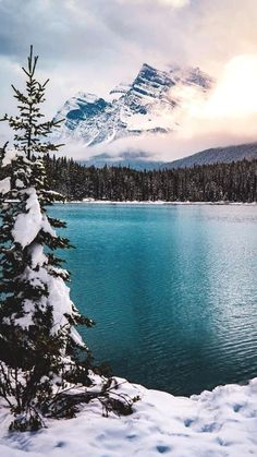 Blue Lake Winter Mountains Pine Trees iPhone Wallpaper campingwallpaper – Sofia - Value activa Iphone Wallpaper Winter, Iphone Wallpaper Mountains, Mountain Wallpaper, Winter Wallpapers, Iphone Wallpapers, Iphone Backgrounds, Wallpaper Backgrounds, Natur Wallpaper, Of Wallpaper