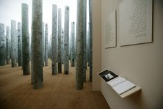 Exhibition Design | Forest without Leaves
