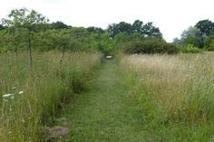 http://www.caue-observatoire.fr/ouvrage/aire-du-jardin-des-arbres-autoroute-a-77-45/