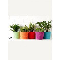 Simple Flower Pot Cozy