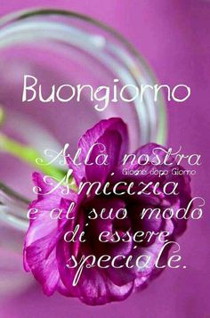 Buongiorno Day For Night, Good Night, Good Morning, Italian Greetings, Messages For Friends, Italian Quotes, Good Day, Pretty In Pink, Neon Signs