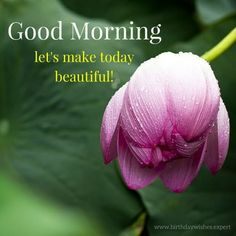 Good Morning. Let's make today beautiful!
