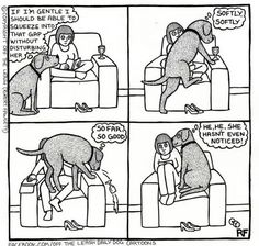 Lol my dogs used to do this
