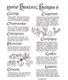 Wiccan Nine Healing Herbs