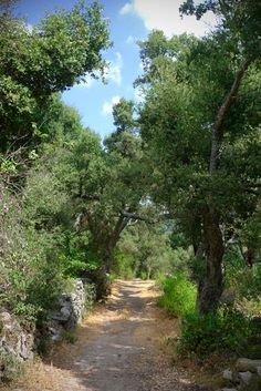 a path at Sardegna, Italy