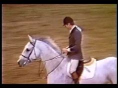"Anthony D'Ambrosio with Sweet & Low setting the Puissance World Record at Washington Int'l Horse Show in 1983 with a 7' 7"" 1/2 jump.  http://globalhorsecents.com"