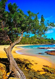 Moloaa Beach - Kauai, Hawaii