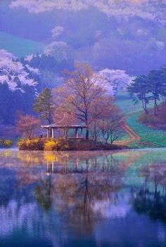 Beauty of South Korea...so different from their neighbors in the North.
