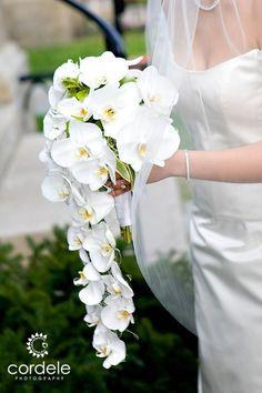 White Orchids Wedding boutique bride flowers white flowers Hawaiian flowers White Orchids We White Orchid Bouquet, White Wedding Bouquets, White Orchids, Bride Bouquets, Flower Bouquet Wedding, Floral Bouquets, Floral Wedding, Orchid Bridal Bouquets, Wedding White