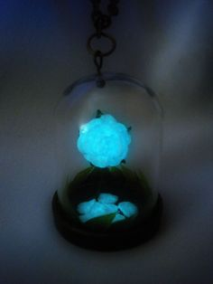 Hey, I found this really awesome Etsy listing at http://www.etsy.com/listing/123928245/enchanted-rose-glow-in-the-dark-glow-in