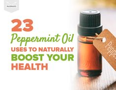 Peppermint oil is an extremely versatile oil that offers countless benefits. Pure Peppermint Oil, Peppermint Tea Benefits, Peppermint Plants, Essential Oil Uses, Doterra Essential Oils, Holistic Remedies, Herbal Remedies, Natural Remedies, Health Remedies