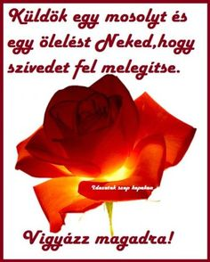 Küldök egy mosolyt egy ölelést Good Morning, Verses, Profile, Thoughts, Quotes, Facebook, Google, Instagram, Bom Dia