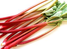 rabarbar owoc czy warzywo