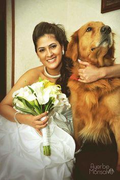 Tu mascota en las fotos de boda - Olenka y Mateo