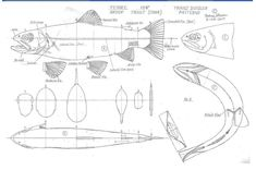Fish Carving Patterns