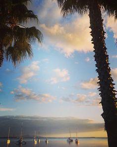 Beautiful sunrise in Geelong today!  #geelong #visitvictoria #visitgeelong #visitmelbourne #geelongwaterfront #beautiful #sunrise #australia #summer #whiteshutterphotography #instafollow #wanderlust #wandervictoria #bupa #weetbixkid #weetbixtryathlon by white_shutter_photography http://ift.tt/1JtS0vo