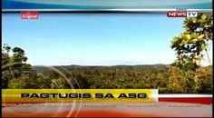 Balita Pilipinas Ngayon is the daily regional news broadcast of GMA News TV Pinoy, Tv Shows, Wednesday