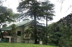 Hotel in palampur-Hotels in dharamshala -Norewood Green