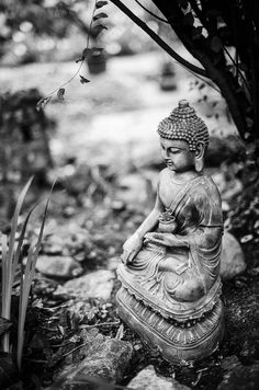 Emptiness is the greatest freedom. Canon A-1 Canon nFD 50mm 1.4  Ilford FP4 developed with LC29 119 8min 20deg buddha film analog filmisnotdead ilford canon fd 50mm 14 bokeh bokehlicious statue