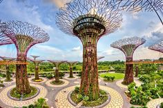 13 Free Things To Do In Singapore We Bet You Didnu0027t Know About