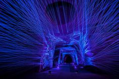 Eighty-two feet under the surface of the earth, hidden within the cellars of the Maison Ackerman winery in Saumur, France, an eerie blue-violet wonderland blooms in carefully constructed arrangemen…
