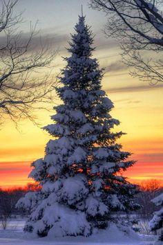 Sunset on the prairie won