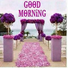 Good Morning Have A Nice Day Pics Photos Images Quotes Wishes Wallpaper For Whatsa