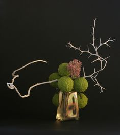 Ikebana arrangement using a tequila bottle, horse apple, pink sedum, white kiwi branch, and white trifoliate orange branch. - This is so cool!  I love the branch with the thorns.