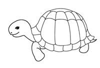 Looking for a Coloriage Imprimer Tortue. We have Coloriage Imprimer Tortue and the other about Coloriage Imprimer it free. Easter Coloring Pictures, Easter Colouring, Butterfly Coloring Page, Digital Stamps, Line Design, Good Company, Design Reference, Squirrel, Ladybug