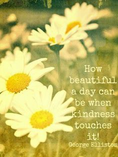How beautiful a day can be when kindness touches it.