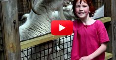 Despite Losing Her Life To Violence, 6 year old Catherine Hubbard's Dream Lives On. | The Animal Rescue Site Blog