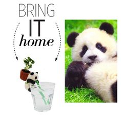 """""""Bring It Home: Ceramic Self-Watering Animal Planter"""" by polyvore-editorial ❤ liked on Polyvore featuring interior, interiors, interior design, home, home decor, interior decorating and bringithome"""