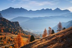 Morning in the pass - Photos from Dolomite. Pass Photo, Travel Photographer, Mountains, Places, Landscapes, Trees, Photography, Beautiful, Photos