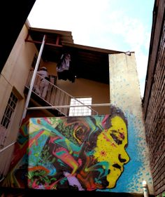 Stinkfish New Collaborations - Bogota, Colombia