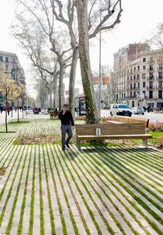 Panot paving slabs (ensanche paving) in barcelona park