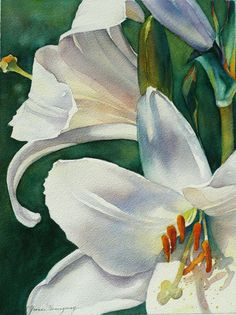 Fine Art Print of White Lilies with Green Background from Original Watercolor Painting-Watercolor Print-Floral Home Decor for Flower Lovers