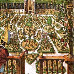 Renaissance Italian Herb garden. It was in fact the monasteries and convents who were responsible for gathering and classifying many of the herbs that we still use today, mainly for medicinal use