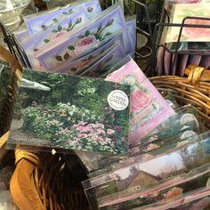 バラの香りのティーバッグとコピスガーデンのお庭を映したポストカードをセットにしました!