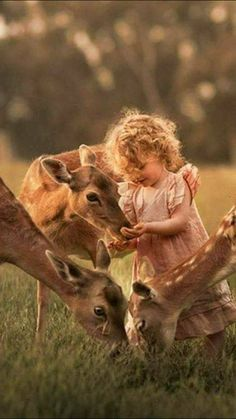 the beauty of the innocence of human and animal babies