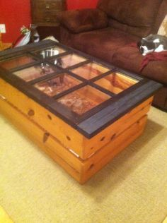Tortious habitat/coffee table