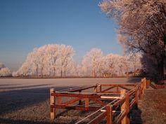 Images Ruinen, Drenthe winter