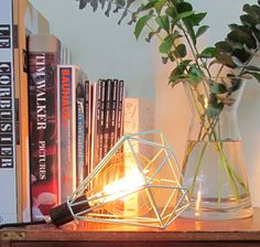Diamond Cage Lamp Peppermint and Vintage Globe 125mm Squirrel Cage Filament Bulb from www.thatlightingshop.co.uk