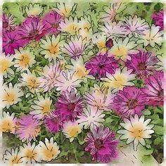 Flowers - Printable Art, Instant Downloadable Images, Fine Art. by edeblas on Etsy