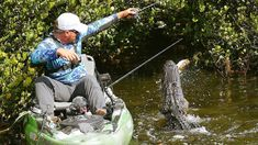 Two professionals go fishing in Alligator infested waters to see who can catch the biggest Bass the loser has to cannonball into the Water. Daniel Handler, Going Fishing, Central Florida, Bass, Canning, Water, Gripe Water, Home Canning, Lowes