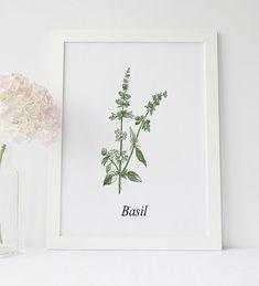 Basil Wall Art, Basil Herb Print, Garden Wall Decor, Rustic Kitchen Decor, Basil leaf Print, Botanical Art, Dining Room Decor, Plant Label